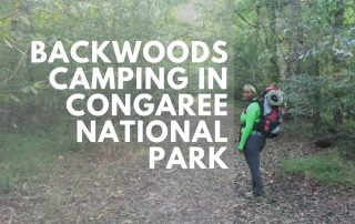 backwoods-camping-in-congaree-national-park